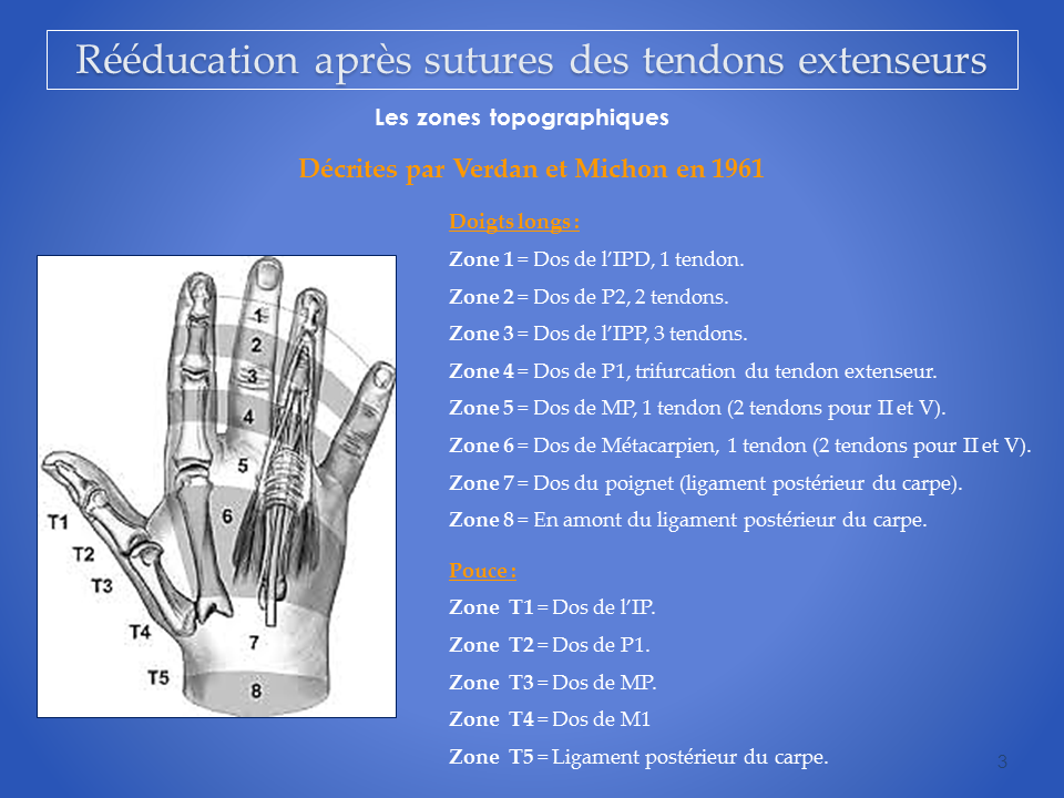kine-main-grenoble-kinesitherapeute-reeducation-tendon-3