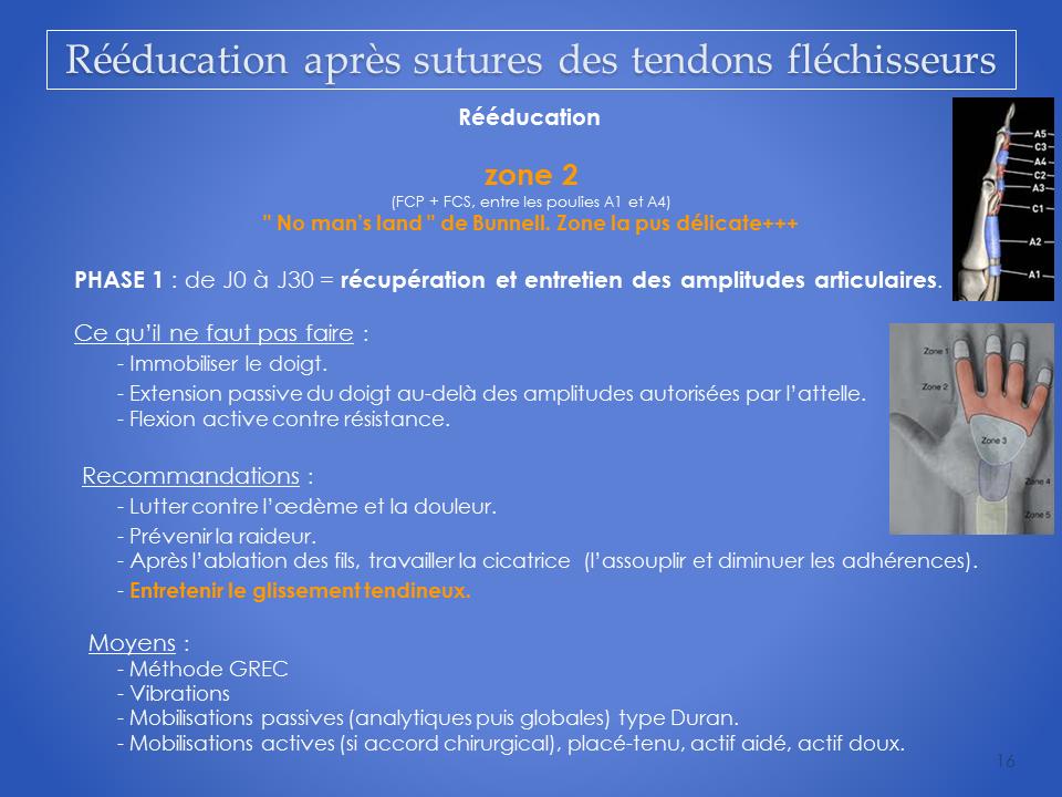 kinesitherapeute-main-grenoble-reeducation-flechisseur-16